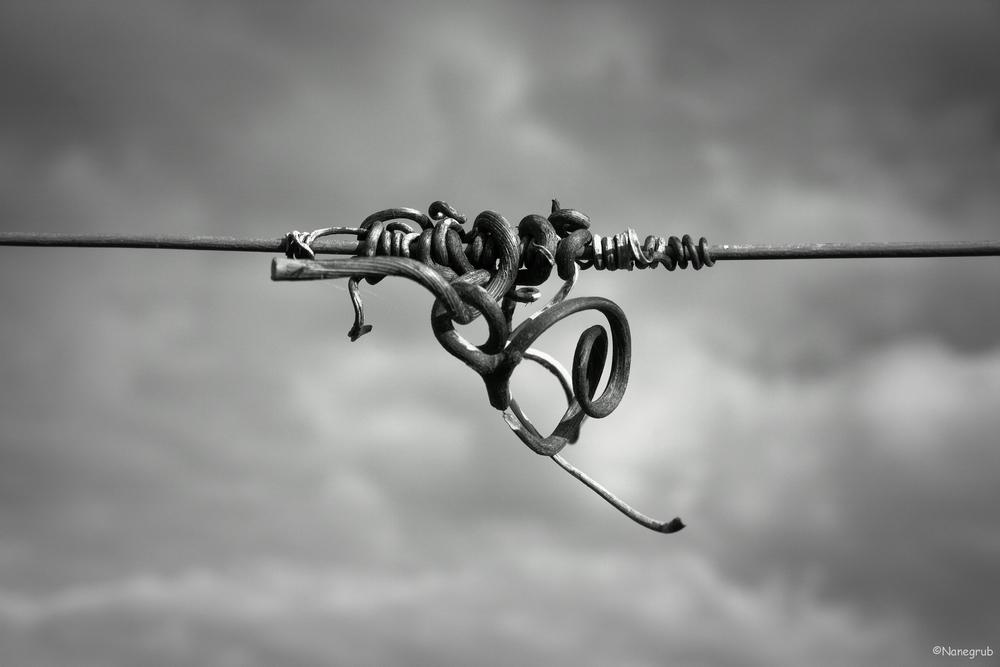 L'acrobate