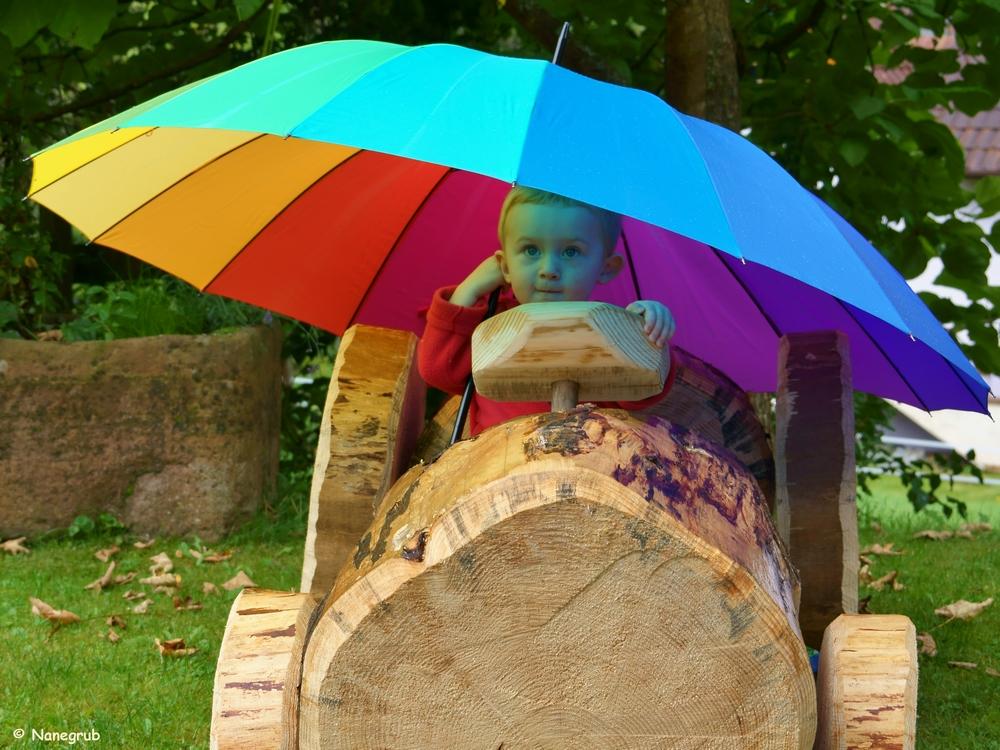 DSC01096 voiture parapluie