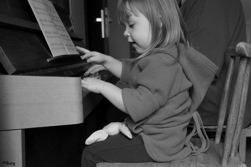 DSC00793 pianiste en herbe 1