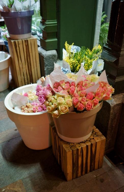 Chez le fleuriste  - DSC00959