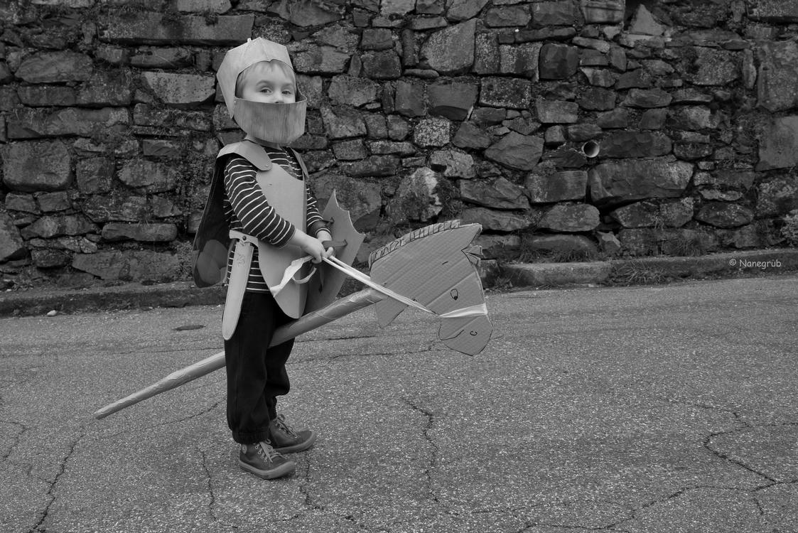 DSC00368 - le chevalier Noah