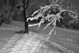DSC00769 neige nocturne